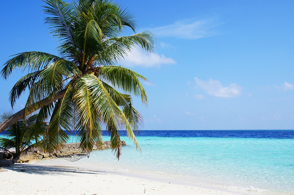 Maldives Crisis and neighborhood on stake
