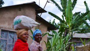 Foreign Aid: A Curse or a Blessing for Sub Saharan Africa?